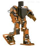 创新型人形仿生机器人