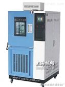 上海耐臭氧老化试验箱-臭氧老化箱-老化箱