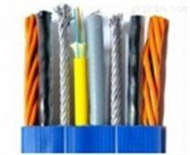 本質安全電路用對絞屏蔽控制電纜價格