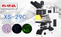 五波段LED荧光生物显微镜XS-29C