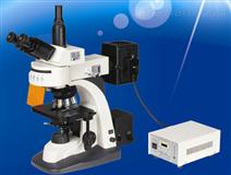 EX3000荧光显微镜