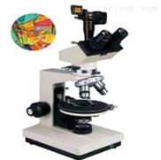 偏光显微镜XP-300