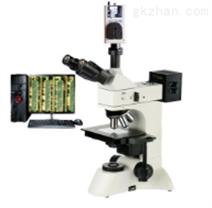 微分干涉显微镜 TMM-301 DIC