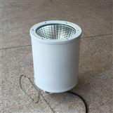 NFC9120-LED站台灯厂家