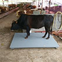 2吨称猪地磅秤贵州称牛电子磅价格围栏秤