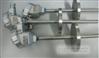 一體化防爆鎧裝熱電阻(電溫度變送器)