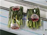 惠州蔬菜包裝機