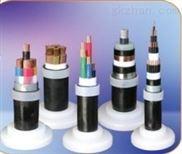 MVV22铠装电力电缆-价格