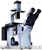 IX51研究级倒置显微镜