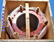 賽力盟YR高壓電機集電環