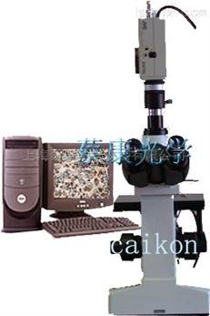电脑型三目倒置金相显微镜:DMM-400C