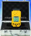 天津、石家庄DJY-1200氧气检测仪