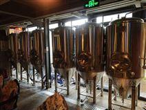 德国500升精酿啤酒设备