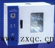 电热恒温鼓风干燥箱 型号:KW01-101-2ASB
