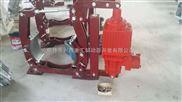 十月一日提前订购DYW250-450带式输送机制动器