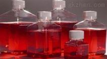 胰蛋白月示-亚硫酸盐-琼脂培养基厂家