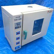 101-4A型鼓风干燥箱简单实用
