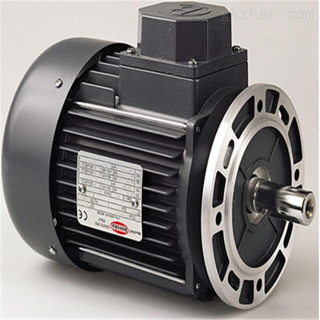 意大利Motori Bonora交流电机