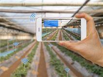 農業大棚農田自動化智能灌溉控制節水系統