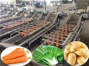 全自动根茎蔬菜清洗机-汽浴毛刷清洗机-全自动净菜加工设备