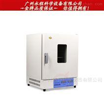 供应上海新苗DHG-9423BS高温烤箱 恒温烘箱