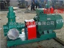 供应河北海通2CG-2型高温泵,防爆齿轮泵