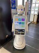 迎賓接待導引講解機器人