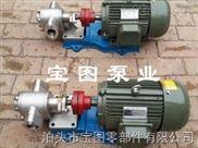 KCB微型不锈钢齿轮泵出现故障如何快速解决--泊头宝图
