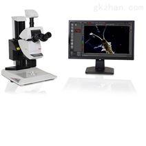 徠卡顯微鏡攝像頭Leica DMC5400
