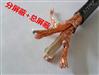 分屏总屏钢带铠装阻燃型计算机屏蔽电缆