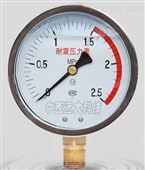 耐震压力表 型号:HQ04-YTN-100