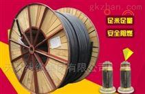 天环线缆 国标保检 高压电力电缆