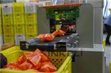 单个新鲜沃柑全自动包装机