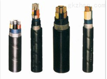 Proxitron柏西鐵龍 電纜 LLK464361 希而科