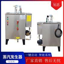 旭恩小型生物质燃料蒸汽发生器