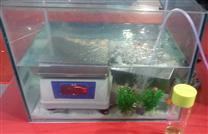高精度7.5kg防水桌称厂家