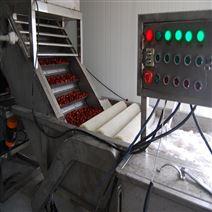 厂家定制水果气泡佛手清洗机质量优