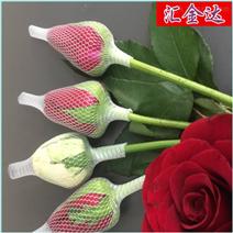 微发泡玫瑰花网套机 汇欣达专业珍珠棉设备