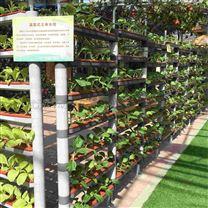 景观温室无土栽培立体漏窗式水培架