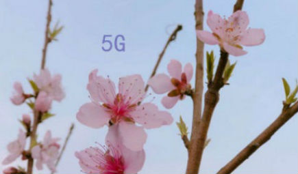 5G应用百花齐放 智能工厂建设迎来暖春