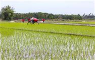 5G时代来了,智慧农业发展将迎来空前高潮