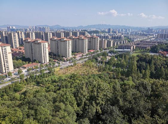 工信部支持创建济南-青岛、深圳AI创新应用先导区