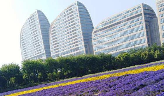 2019中國智能量測產業技術創新戰略聯盟峰會在北京召開