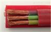 ZR-YGCB-0.6/1KV-3*10+1*6阻燃型硅橡胶动力扁电缆